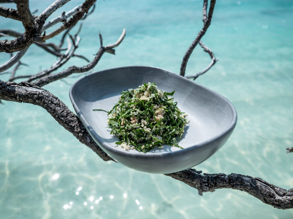 Artistically presented cabbage salad balancing on a tree in the Maldives